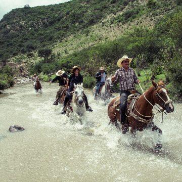 A cowboy's reverie