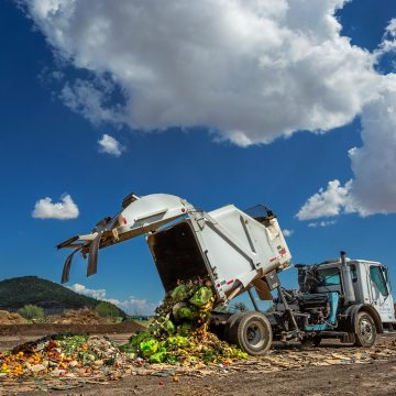 The millionaire business of food waste