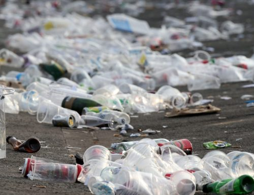 Tackling plastic pollution with new business ideas
